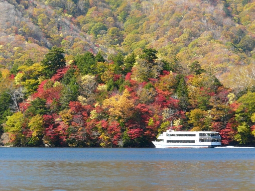 中禅寺湖 八丁出島の紅葉