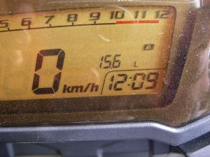 IMGP4390.jpg