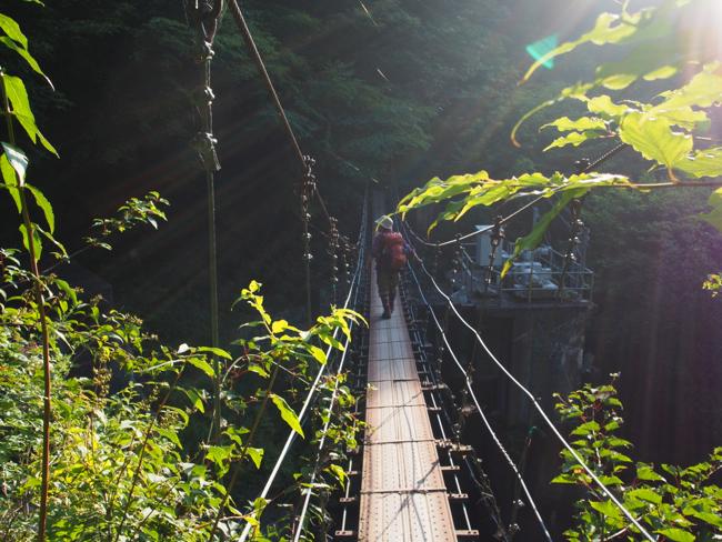 吊り橋渡れ