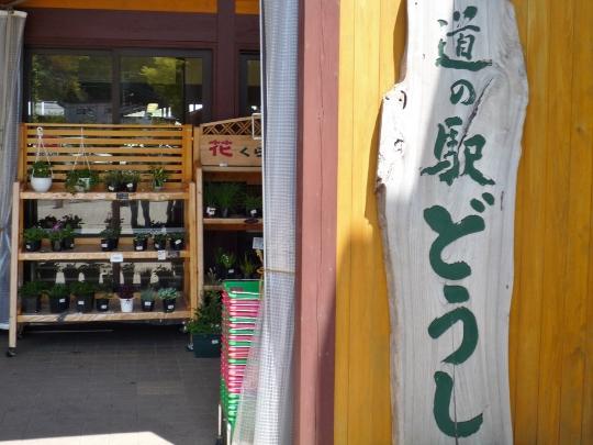 13_04_27-08yamanakako.jpg
