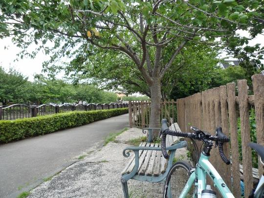 13_07_06-13aonohara.jpg