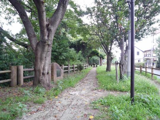 13_09_14-23okutamako.jpg