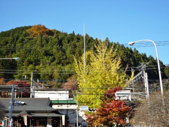13_11_23-16okutamako.jpg