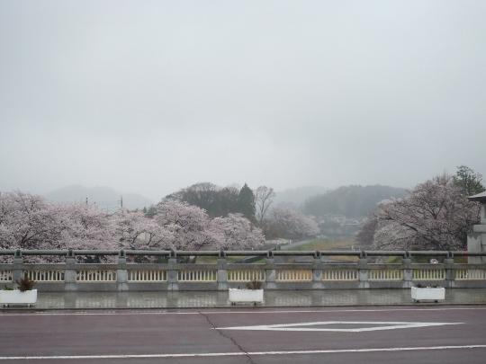ryounan13_03-03.jpg