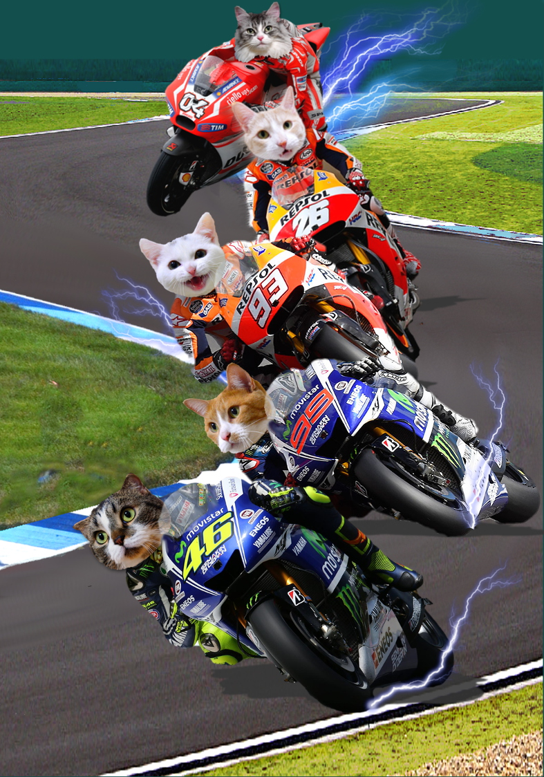 MotoGP2014background7.jpg