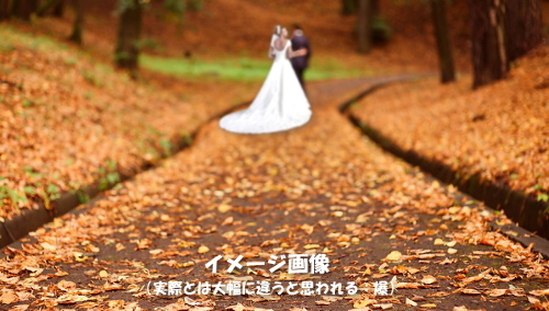 fall-wedding2.jpg