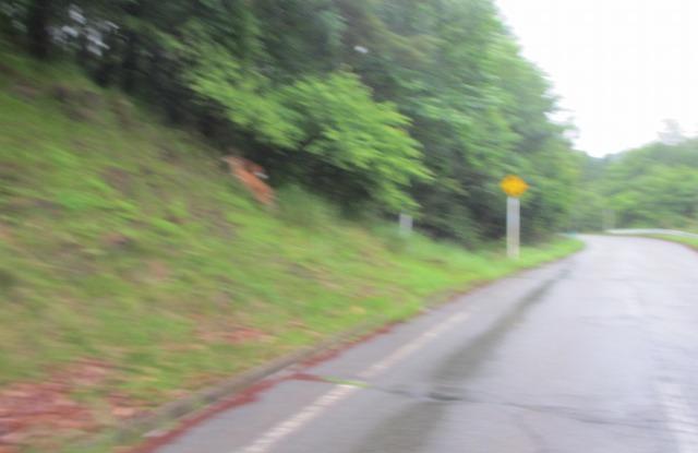 20130705雨模様の御射鹿池 (3)