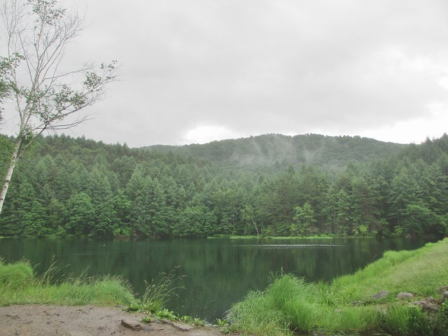 20130705雨模様の御射鹿池 (4)