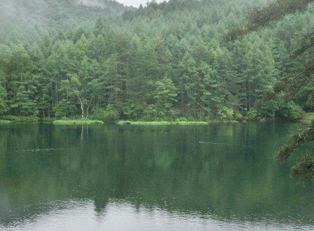 20130705雨模様の御射鹿池 (7)
