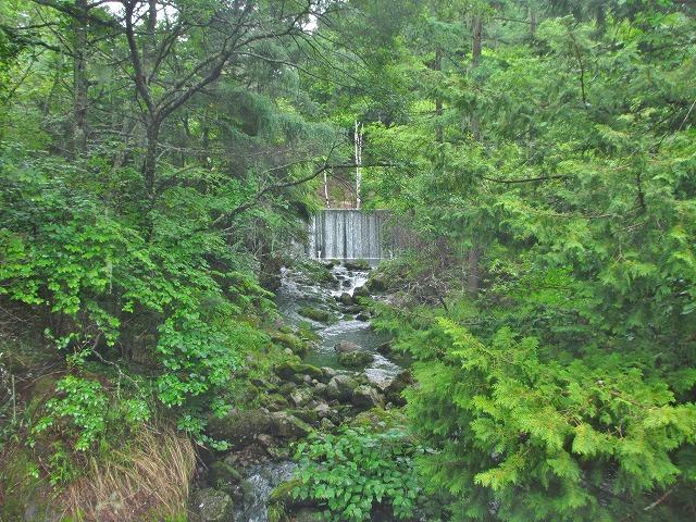 20130705雨模様の御射鹿池 (10)