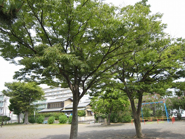 20130729焼津だより (6)