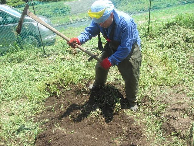 20130804草刈り (36)