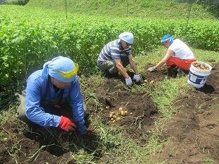 20130804草刈り (39)