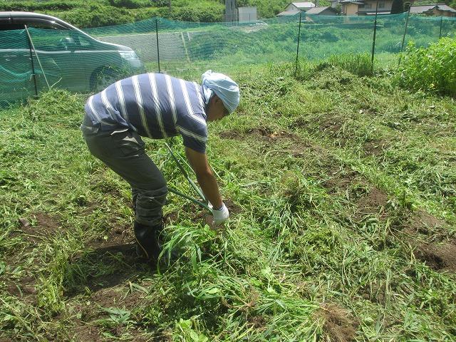 20130804草刈り (29)