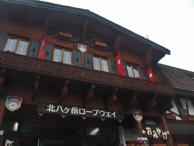 20130808花いっぱい運動 (23)