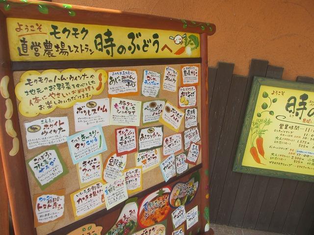 20130722時ぶどう(松阪) (17)
