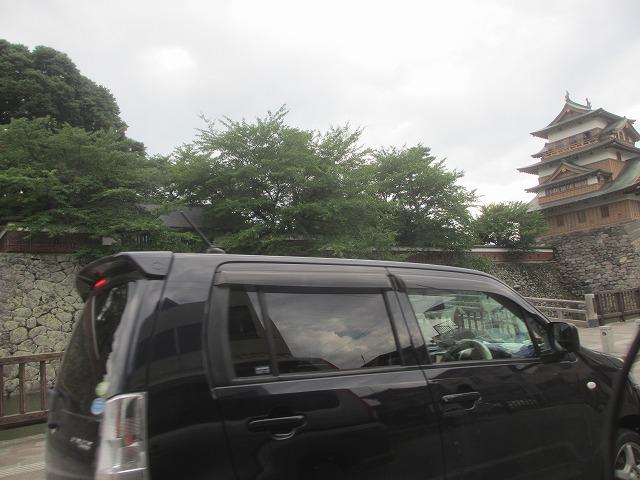 20130804高島城の亀 (2)