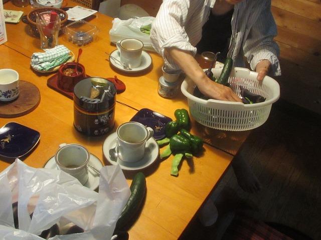 20130731渡辺さんの別荘 (1)
