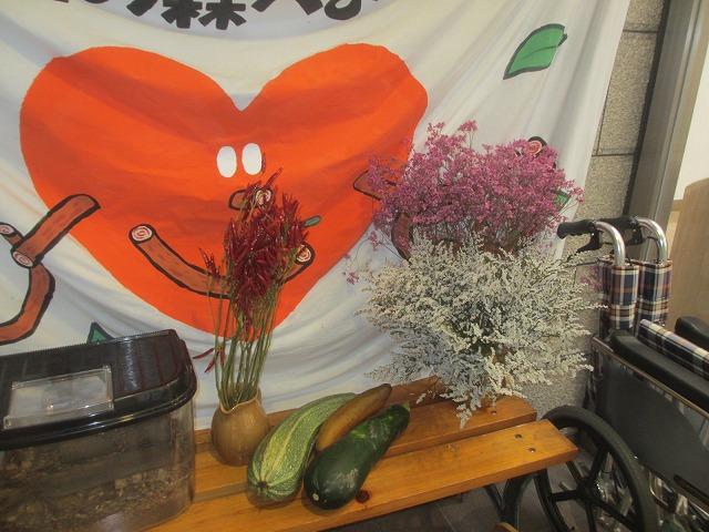 20130731渡辺さんの別荘 (4)