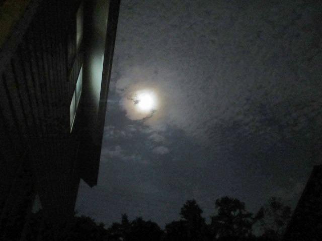 20130820月夜 (7)