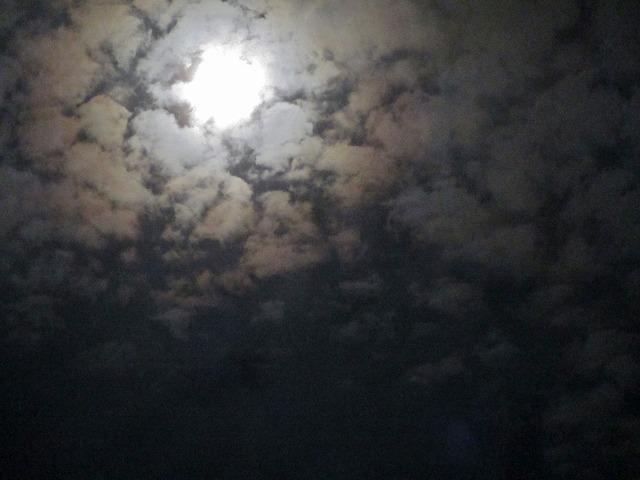 20130820月夜 (17)