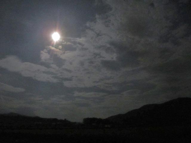 20130821今日が満月 (3)