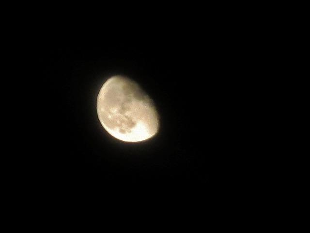 0130825月夜 (12)