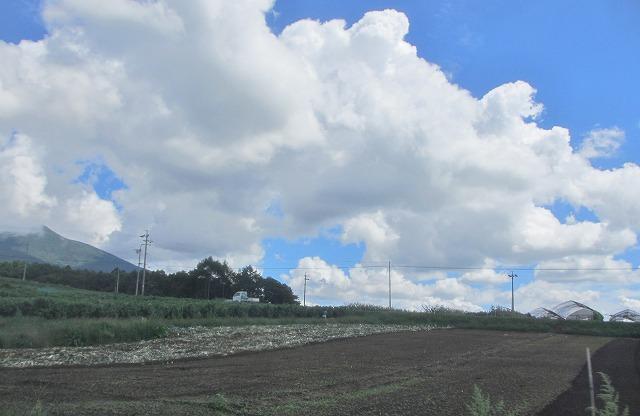 20130909バディアス農園収穫開始 (1)