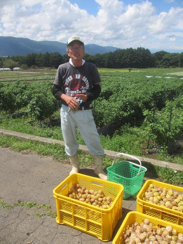 20130909バディアス農園収穫開始 (25)