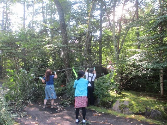 20130909井上部長の森づくり (5)