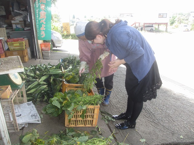 20130909宮坂農園の枝豆 (2)