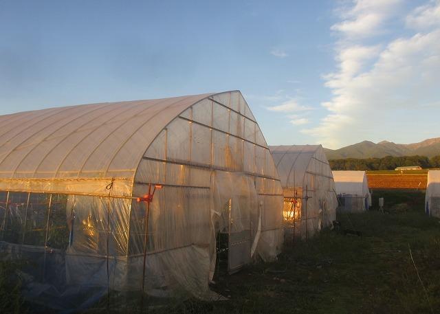 20130917篠原さんの台風被害 (6)