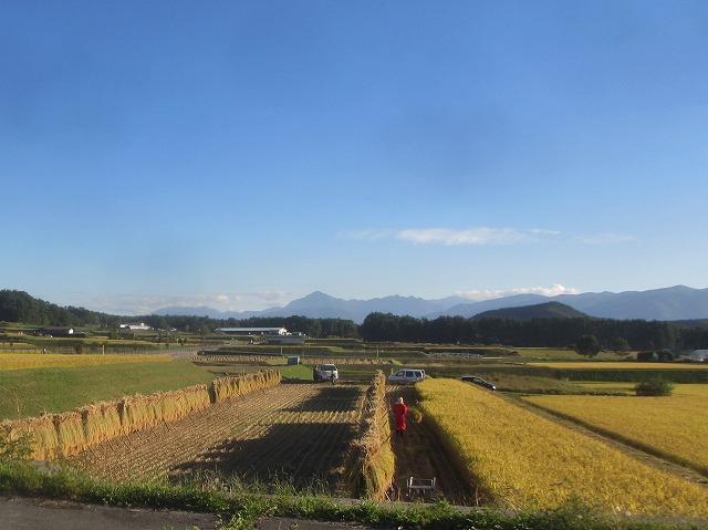 20130926快晴の田園風景 (16)
