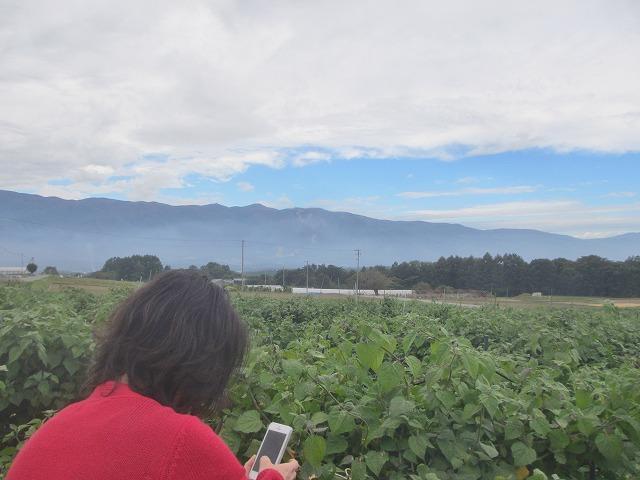 20131001バディアス農園で (7)