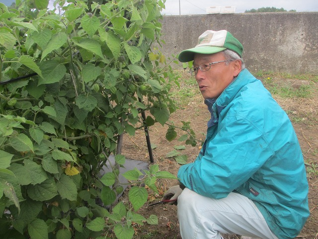 20131001バディアス農園で (20)