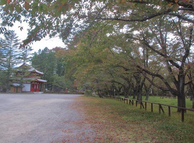 20131010聖光寺の秋 (2)