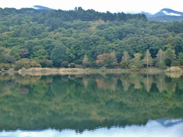 20131010蓼科湖の撮影 (18)