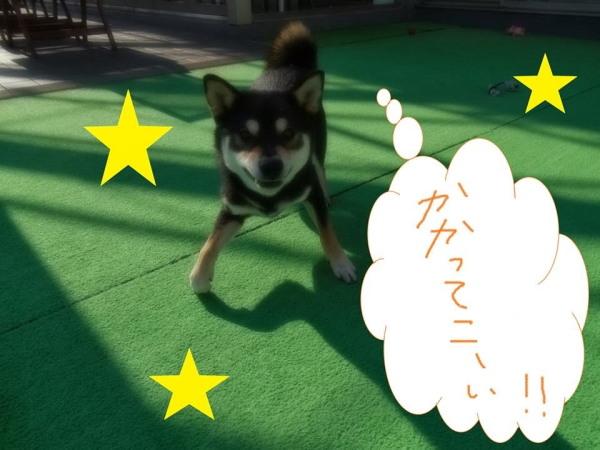 2014_ 1_ 7_21_ 8 (2)