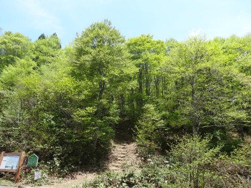 扇ノ山 登山口