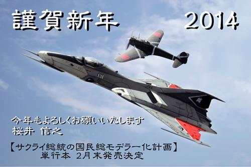 2014np.jpg