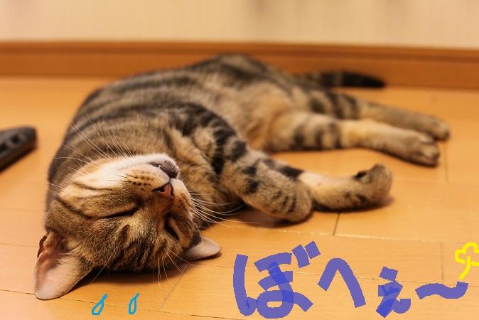 (1)_20130712200127.jpg