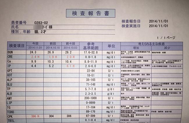 blog_000004245.jpg