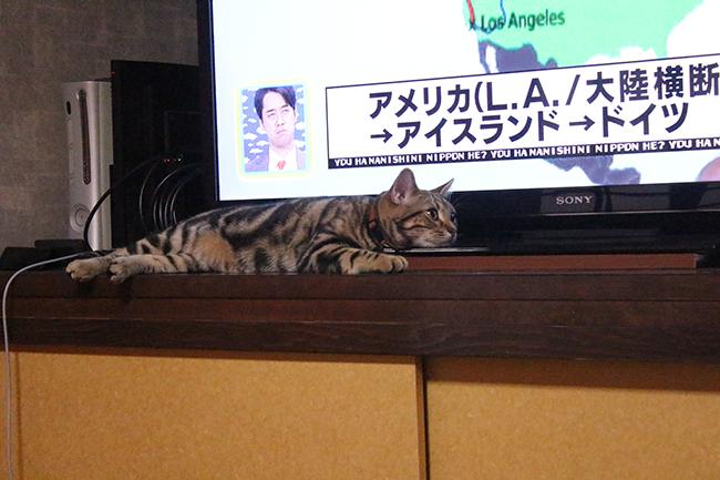 blog_001085.jpg