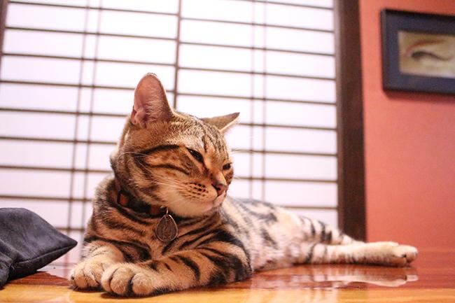 blog_001100.jpg