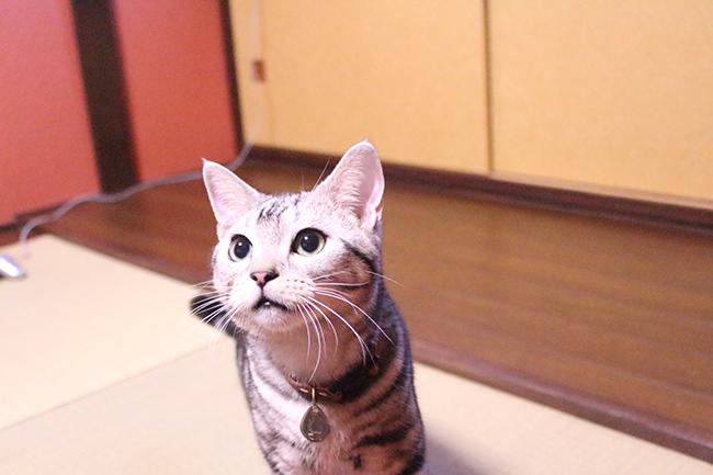 blog_001114.jpg