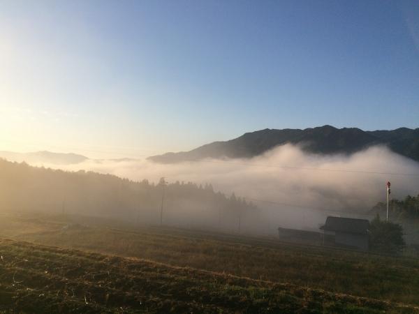 1411181-牧戸の朝霧02