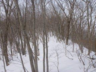 s06静かに雪が降る