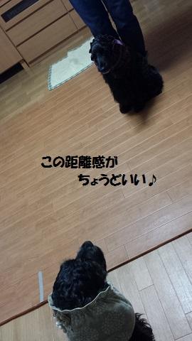 20141102_163528.jpg