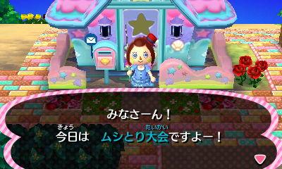 mushitoritaikai_kokuchi.jpg