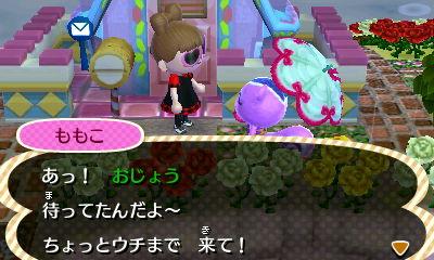 odemukae_0923.jpg
